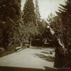 Fotografía antigua: PARQUE DEL RETIRO. JARDINES. MADRID. C. 1905. Lote 30647389