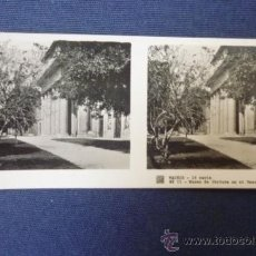 Photographie ancienne: MADRID. Lote 32659398