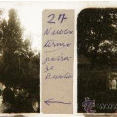Fotografía antigua - NUMULITE C0253 Cristal Estereoscópico Paisaje bucólico imagen animada de época señoras - 32756923