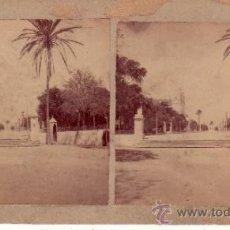 Fotografía antigua: FOTOGRAFIA ESTEREOSCOPICA - CADIZ - ALAMEDA DE APODACA - AL FONDO IGLESIA DEL CARMEN. Lote 34655709