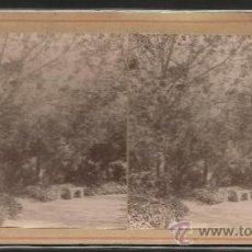 Fotografía antigua: BARCELONA - DETALLE DEL PARQUE - FOTO ESTEREOSCOPICA - (F-364). Lote 37493640