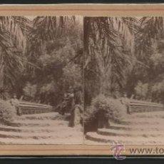 Fotografía antigua: BARCELONA - DETALLE DEL PARQUE - FOTO ESTEREOSCOPICA - (F-366). Lote 37494166
