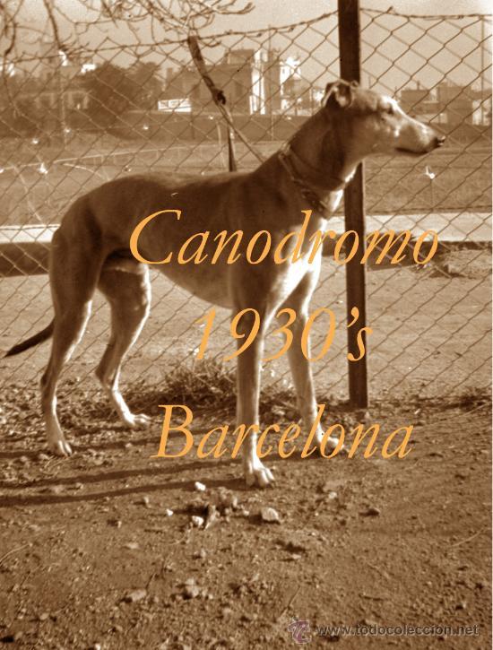CANODROMO - LES CORTS - BARCELONA - 1930'S - 4 NEGATIVOS (Fotografía Antigua - Estereoscópicas)