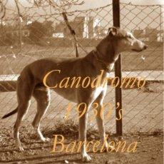 Fotografía antigua: CANODROMO - LES CORTS - BARCELONA - 1930'S - 4 NEGATIVOS. Lote 38874934