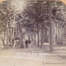 Fotografía antigua: CAMPRODON.SIGLO XIX, PASSEIG DE LA FONT NOVA. Lote 42533774