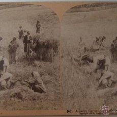 Fotografía antigua: DIEZ FOTOGRAFIAS ESTEREOSCOPICAS ORIGINALES CON SU DESCRIPCION EN AMBAS CARAS. Lote 44708164