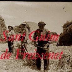 Fotografía antigua: SANT GUIM DE FREIXENET - LLEIDA - CAMPEROLS - 1920'S - NEGATIU DE VIDRE . Lote 56702508