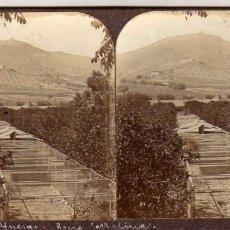 Old photograph - Moderna stereoskopo. Barcelona. Afueras Torre Melina. 17,50 x 8,50 cm - 57975759