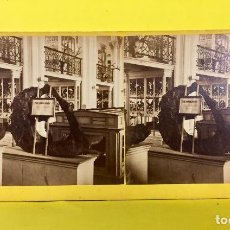 Fotografía antigua: ESTEREOSCOPICA VIEWS INTERIOR SMITHSONIAN INSTITUTE BELL&BRO FFS S XIX 8,6X17,6CMS. Lote 67838857