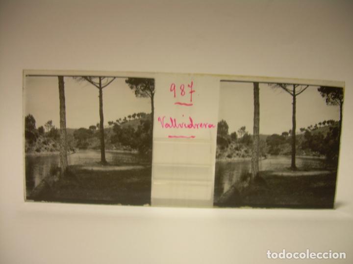 Fotografía antigua: ALREDEDORES DE BARCELONA,FUNICULAR, VALLVIDRERA LABERINTO HORTA 23 CRISTAL ESTREOSCOPICO- CA.1910 - Foto 5 - 89093603