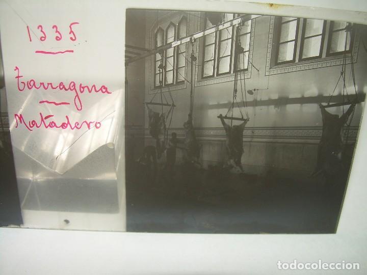 TARRAGONA,MATADERO - CRISTAL ESTEREOSCOPICO- CIRCA. 1.900 (Fotografía Antigua - Estereoscópicas)