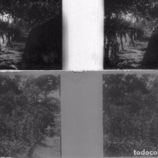 Old photograph - lote 2 estereoscopica de CRISTAL 10,5x5 ctms principios de siglo nº60 y nº 61 paisaje - 89492884
