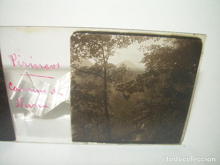 Fotografía antigua: CRISTALES DE NURIA (PIRINEOS)....TOTAL. 8....CIRCA 1.900 - Foto 12 - 89664744