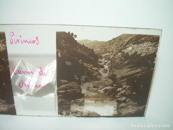 Fotografía antigua: CRISTALES DE NURIA (PIRINEOS)....TOTAL. 8....CIRCA 1.900 - Foto 14 - 89664744
