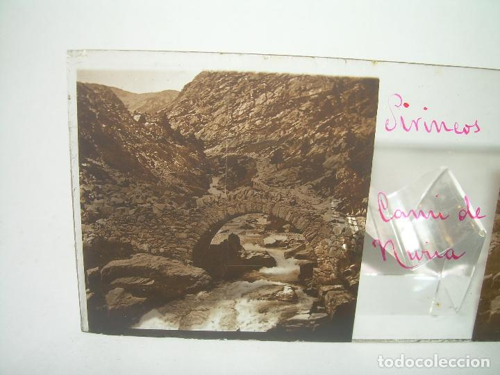 Fotografía antigua: CRISTALES DE NURIA (PIRINEOS)....TOTAL. 8....CIRCA 1.900 - Foto 16 - 89664744