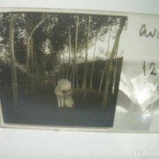 Fotografía antigua: CRISTAL ESTEREOSCOPICO.......PAREJA EN EL PARQUE.......CIRCA. 1.900. Lote 89785056