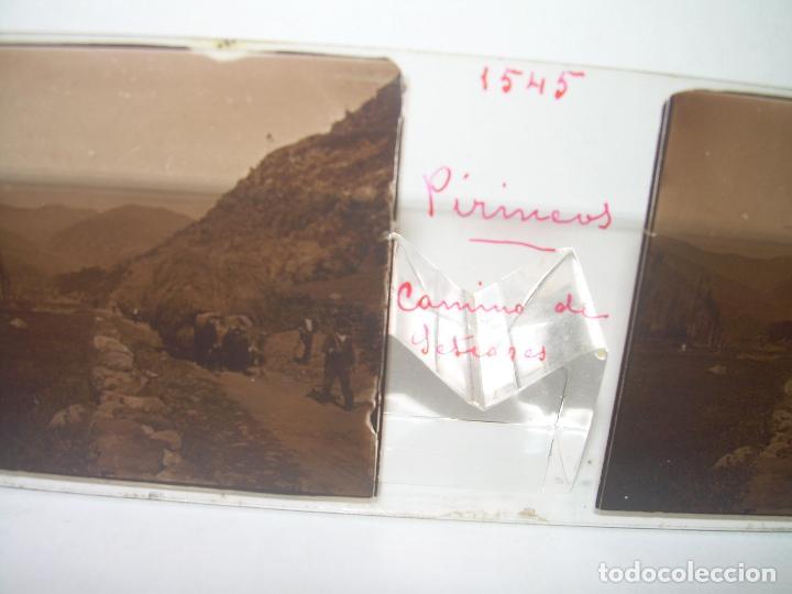Fotografía antigua: TRES CRISTALES ESTEREOSCOPICOS.......SETCASES...RIPOLLES...VALLTER 2000....CIRCA. 1.900 - Foto 6 - 90835375