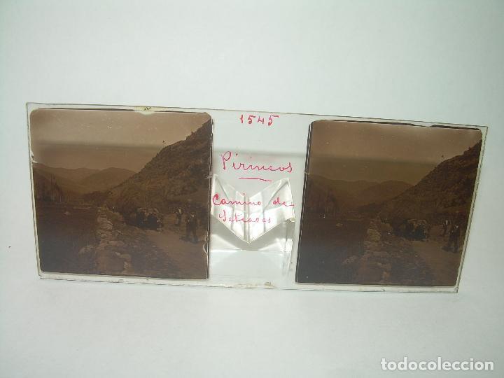 Fotografía antigua: TRES CRISTALES ESTEREOSCOPICOS.......SETCASES...RIPOLLES...VALLTER 2000....CIRCA. 1.900 - Foto 7 - 90835375