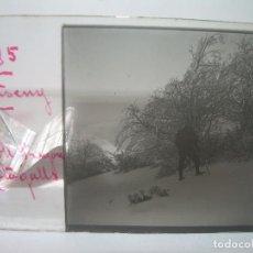 Fotografía antigua: CAJETIN 25 CRISTALES ESTEREOSCOPICOS.....MONTSENY......CIRCA.1.900 . Lote 92769865