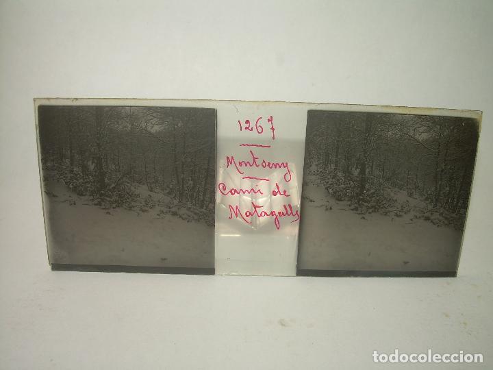 Fotografía antigua: CAJETIN 25 CRISTALES ESTEREOSCOPICOS.....MONTSENY......CIRCA.1.900 - Foto 27 - 92769865