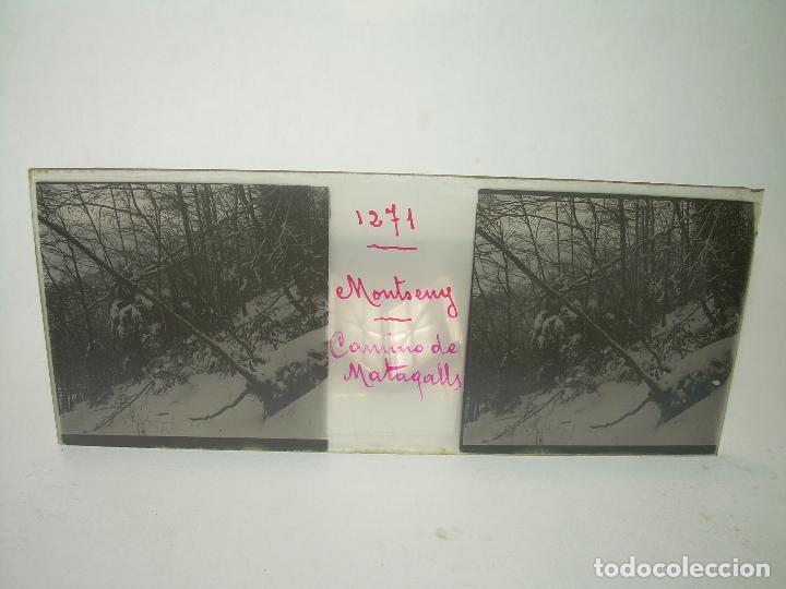 Fotografía antigua: CAJETIN 25 CRISTALES ESTEREOSCOPICOS.....MONTSENY......CIRCA.1.900 - Foto 29 - 92769865