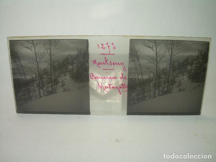 Fotografía antigua: CAJETIN 25 CRISTALES ESTEREOSCOPICOS.....MONTSENY......CIRCA.1.900 - Foto 33 - 92769865
