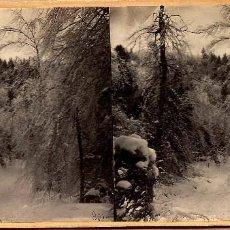 Fotografía antigua: FOTOGRAFIA ESTEREOSCOPICA DE CASTKILL (AMERICA DEL NORTE). Lote 94892719
