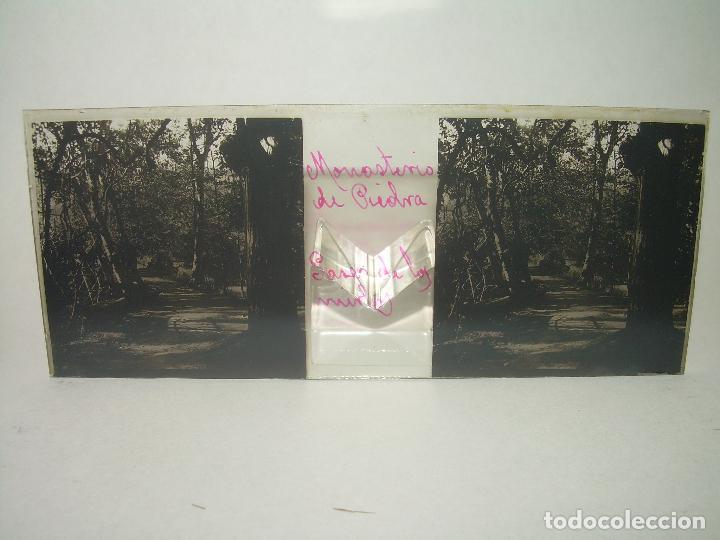 Fotografía antigua: 25 CRISTALES ESTEREOSCOPICOS....ZARAGOZA...MONASTERIO DE PIEDRA....CIRCA..1.900 - Foto 29 - 95302399