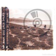 Fotografía antigua: BATNA - ARGELIA - LAGO SALADO - CRISTAL ESTEREOSCÓPICO - FOTOGRAFÍA ÚNICA - AÑOS 10/20. Lote 98384315