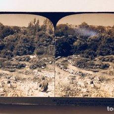 Fotografía antigua: FOTOGRAFÍA ESTEREOSCOPICA AMERICAN STEREOSCOPIC COMPANY.PHILIPPI. Lote 113883860