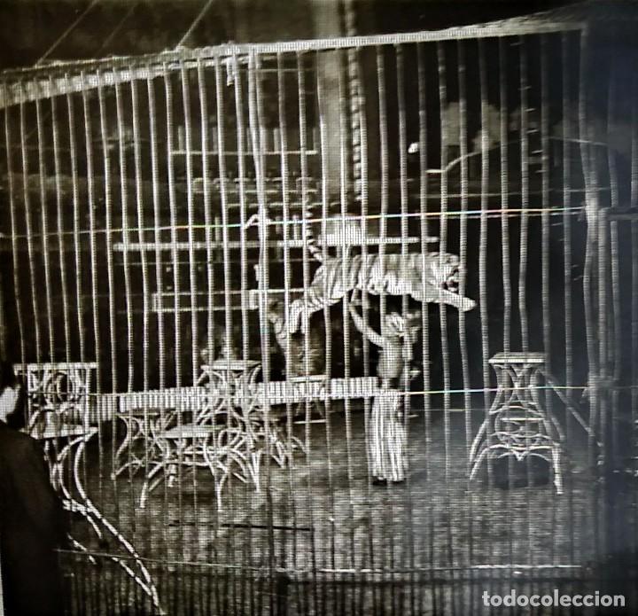 Fotografía antigua: LE CIRQUE BOUGLIONE 10 positivos estereoscópicos sobre film en caja original - circo - payasos - Foto 5 - 117385931