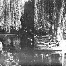 Fotografía antigua: VALENCIA - VIVEROS - NEGATIVO EN CRISTAL ESTEREOSCOPICO - AÑOS 1920-30. Lote 127239755