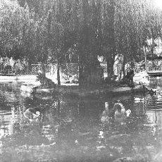 Fotografía antigua: VALENCIA - VIVEROS - NEGATIVO EN CRISTAL ESTEREOSCOPICO - AÑOS 1920-30. Lote 127240123