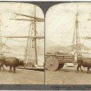 Fotografía antigua: 1890'S FOTOGRAFÍA ESTEREO ALBUMINA PUERTO SAN SEBASTIÁN GUIPÚZCOA UNDERWOOD. Lote 127681039