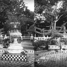 Fotografía antigua: VALENCIA - VIVEROS - POSITIVO EN CRISTAL ESTEREOSCOPICO - AÑOS 1920-30. Lote 128078115