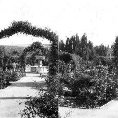 Fotografía antigua: VALENCIA - VIVEROS - POSITIVO EN CRISTAL ESTEREOSCOPICO - AÑOS 1920-30. Lote 128078175