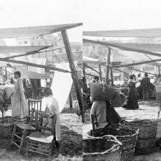 Fotografía antigua: VALENCIA - MERCAT DE RUZAFA - NEGATIVO EN CRISTAL ESTEREOSCOPICO - AÑOS 1920-30. Lote 128369319