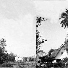 Fotografía antigua: VALENCIA - VISTA BARRACA - NEGATIVO EN CELULOIDE ESTEREOSCOPICO - AÑOS 1910-20. Lote 130309014