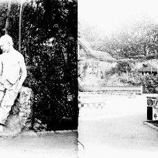 Fotografía antigua: VALENCIA - VIVEROS - NEGATIVO EN CRISTAL ESTEREOSCOPICO - AÑOS 1910-20. Lote 130314910