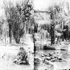 Fotografía antigua: VALENCIA - VIVEROS - NEGATIVO EN CRISTAL ESTEREOSCOPICO - AÑOS 1910-20. Lote 130315394