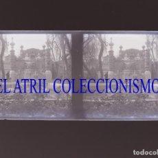 Fotografía antigua: VALENCIA - VIVEROS - NEGATIVO EN CRISTAL ESTEREOSCOPICO - AÑOS 1910-20. Lote 132273362