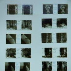Fotografía antigua: CUEVAS DE ARTA, CANYAMEL MALLORCA, 12 VISTAS - CRISTALES POSITIVOS ESTEREOSCOPICOS - AÑOS 1910-20. Lote 132392262