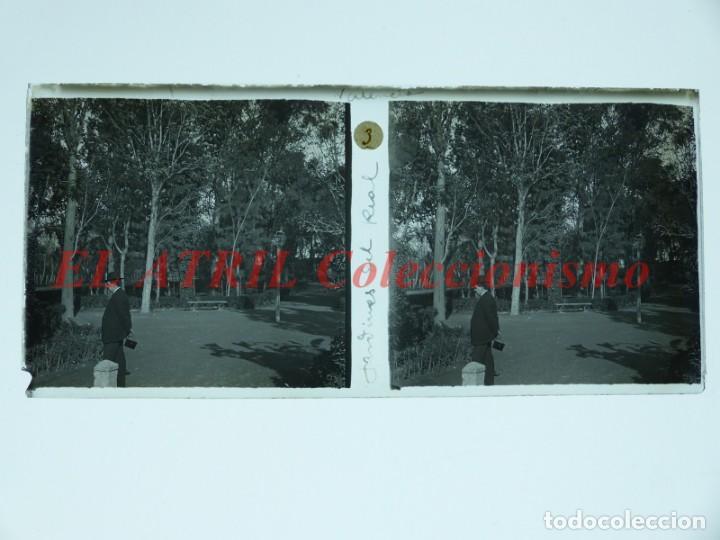 VALENCIA JARDINES DEL REAL - POSITIVO EN CRISTAL ESTEREOSCOPICO - AÑOS 1920 (Fotografía Antigua - Estereoscópicas)