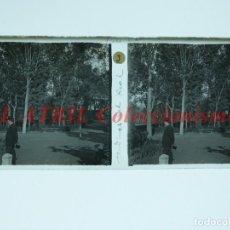 Fotografía antigua: VALENCIA JARDINES DEL REAL - POSITIVO EN CRISTAL ESTEREOSCOPICO - AÑOS 1920. Lote 144462826