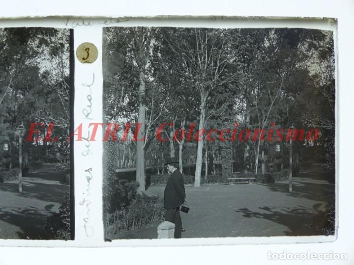 Fotografía antigua: VALENCIA JARDINES DEL REAL - POSITIVO EN CRISTAL ESTEREOSCOPICO - AÑOS 1920 - Foto 2 - 144462826