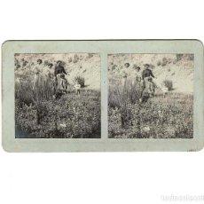 Old photograph - ESTEREOSCÓPICA.- (E. JORDÁ BLANES ALCOY, ALICANTE) - 146522310