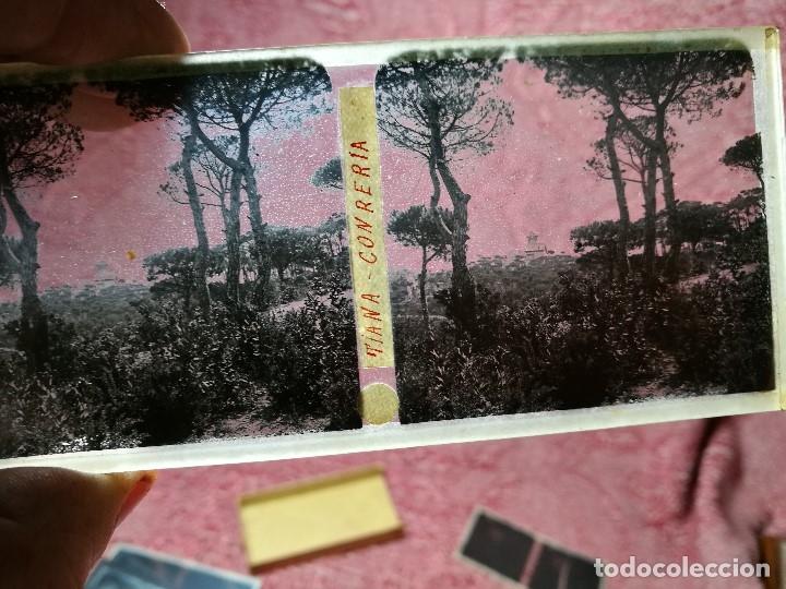 Fotografía antigua: lote 6 placas estereoscopicas de cristal .vidrio..tiana conreria---BARCELONA - Foto 5 - 147197194