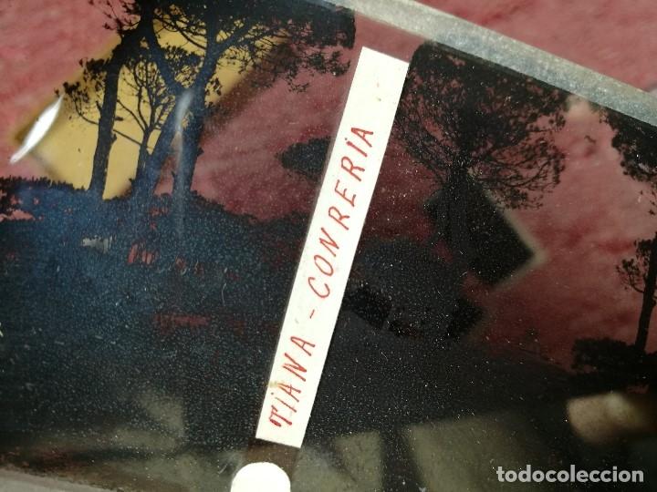 Fotografía antigua: lote 6 placas estereoscopicas de cristal .vidrio..tiana conreria---BARCELONA - Foto 8 - 147197194