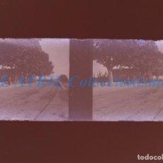 Fotografía antigua: VALENCIA O PROVINCIA - ESTACION DEL TREN - NEGATIVO EN CRISTAL ESTEREOSCOPICO - AÑOS 1920-30. Lote 154065234