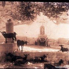 Fotografía antigua: GENOVES VALENCIA NEGATIVO CRISTAL. Lote 169353848